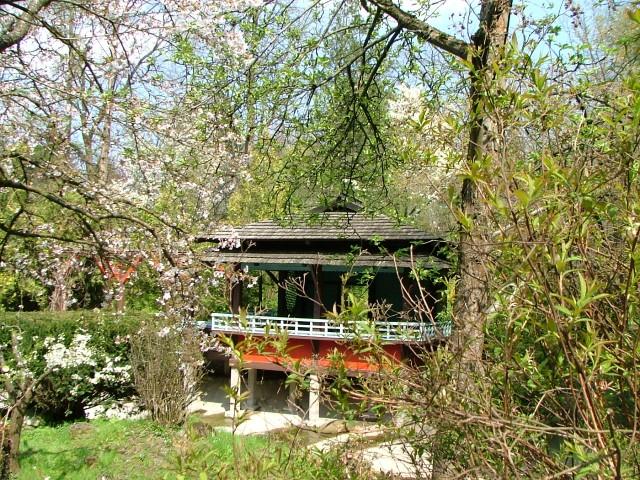 Cluj-Napoca_Botanical_Garden_-_Japanese_Garden