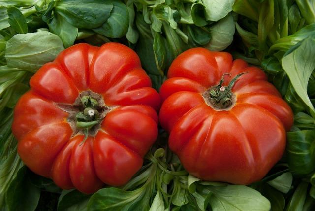 tomatoes-1331730_960_720