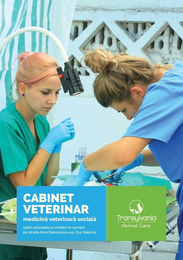 veterinarian cabinet_o